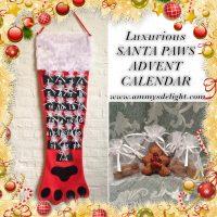 Ammys advent calendar